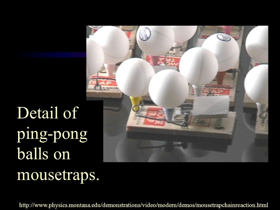 Detail of ping-pong balls on mousetraps.