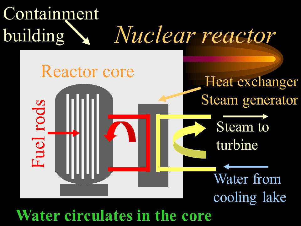 Nuclear reactor Containment building Reactor core Fuel rods