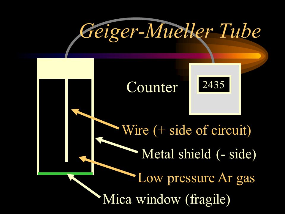 Geiger-Mueller Tube Counter Wire (+ side of circuit)