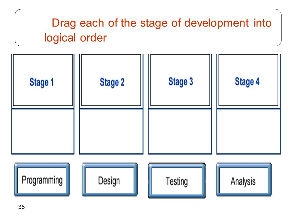 Drag each of the stage of development into logical order