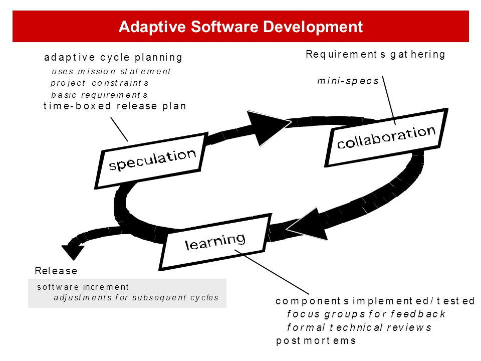 Adaptive Software Development