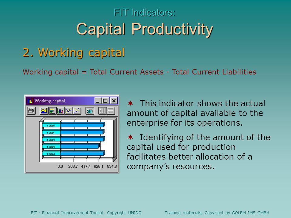 FIT Indicators: Capital Productivity