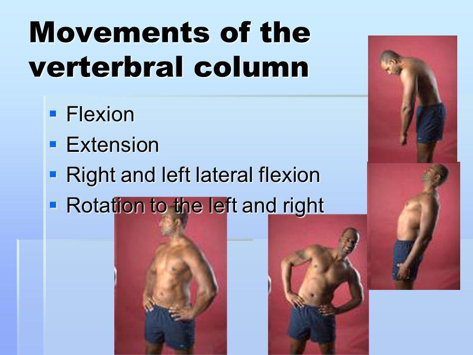 Movements of the verterbral column