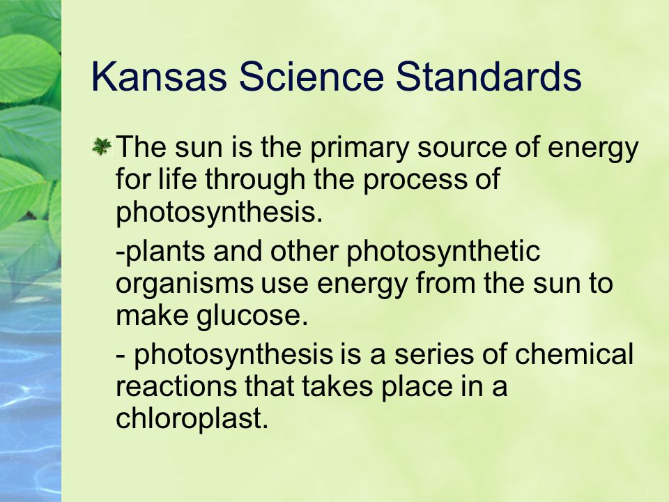 Kansas Science Standards