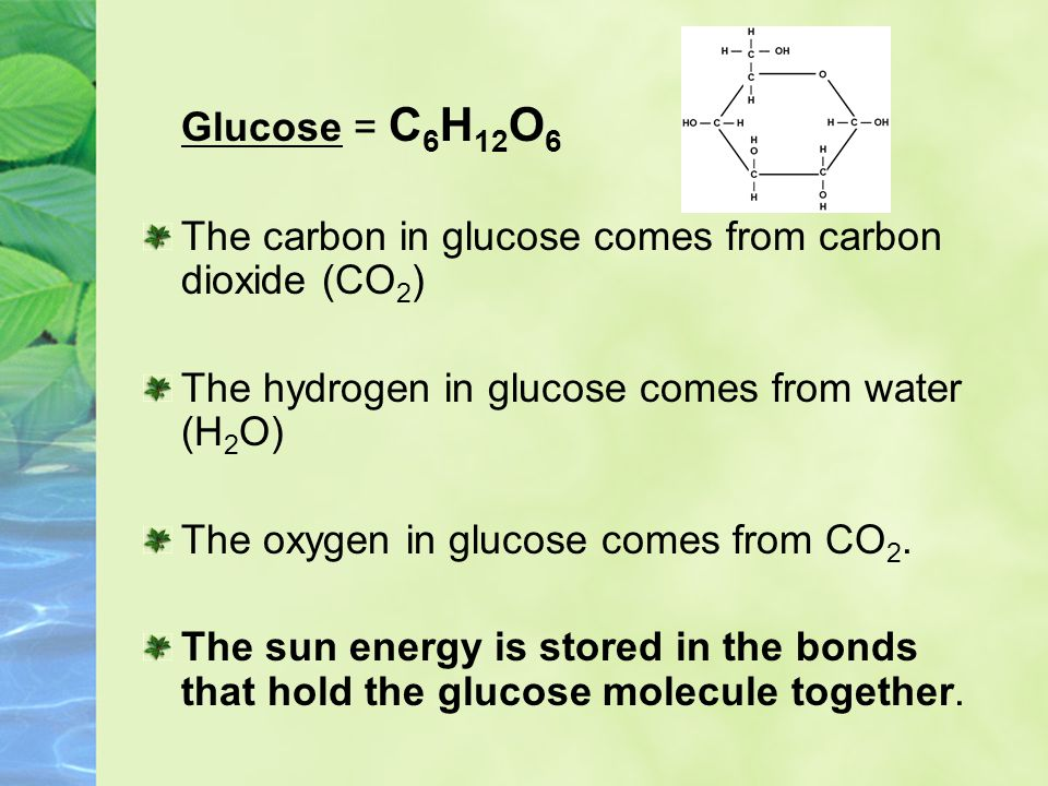Glucose = C6H12O6 The carbon in glucose comes from carbon dioxide (CO2) The hydrogen in glucose comes from water (H2O)