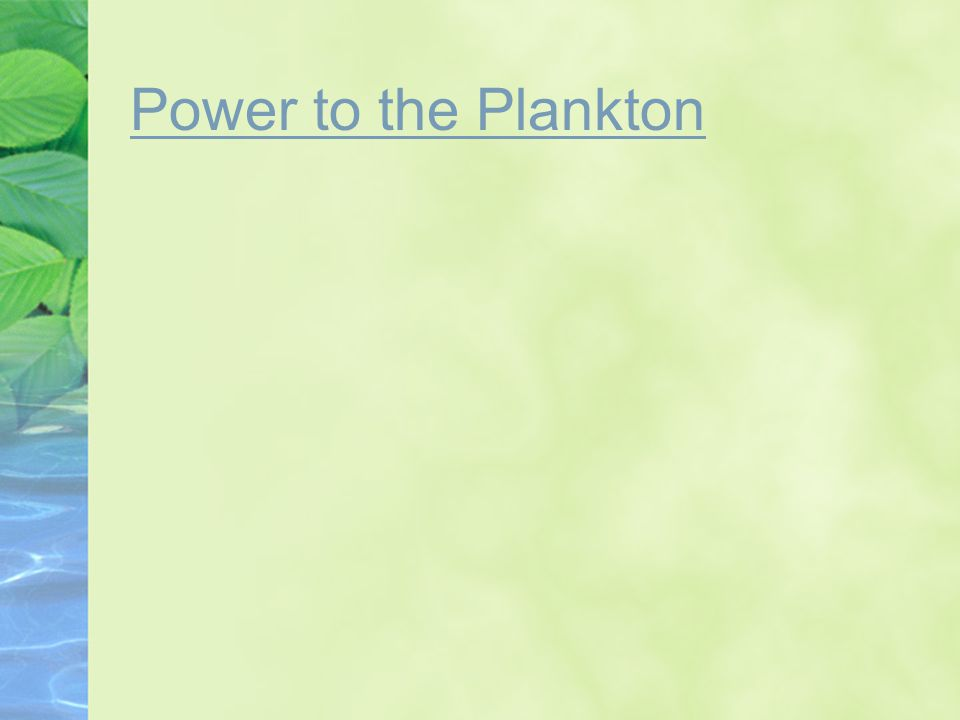 Power to the Plankton