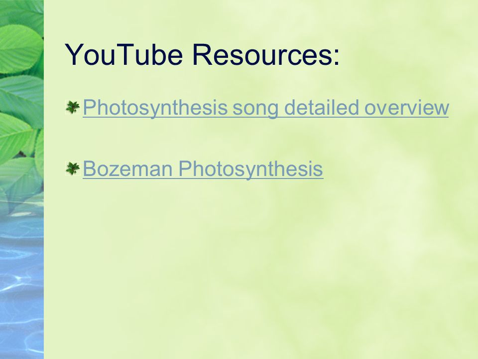 YouTube Resources: Photosynthesis song detailed overview