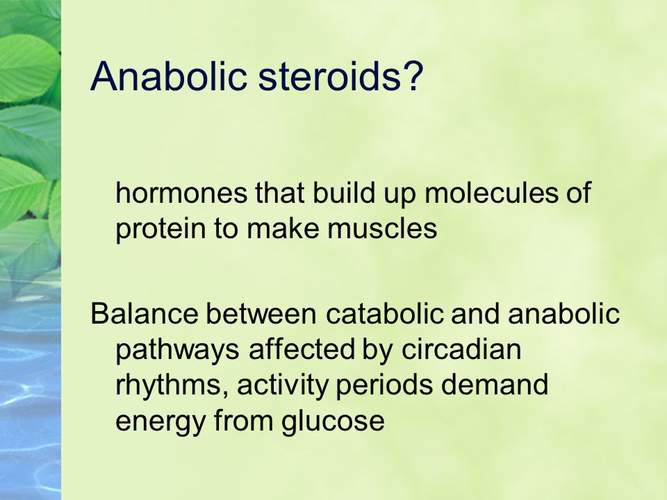 Anabolic steroids hormones that build up molecules of protein to make muscles.