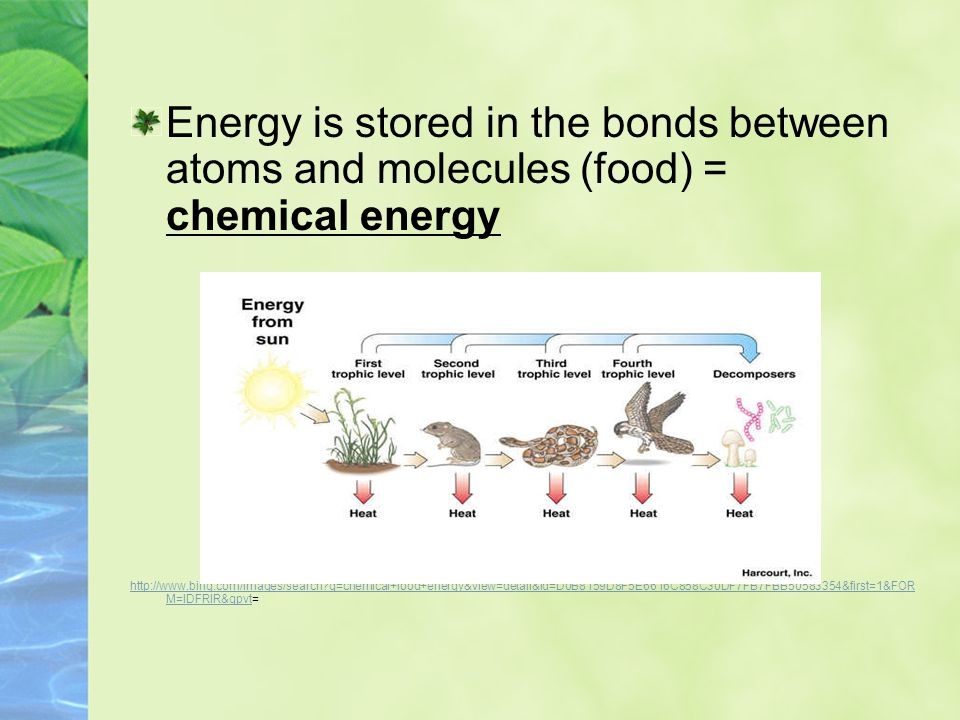 Energy is stored in the bonds between atoms and molecules (food) = chemical energy