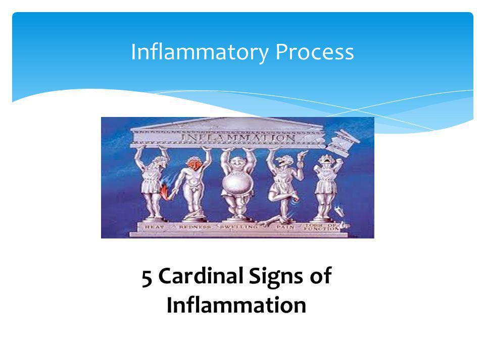 5 Cardinal Signs of Inflammation