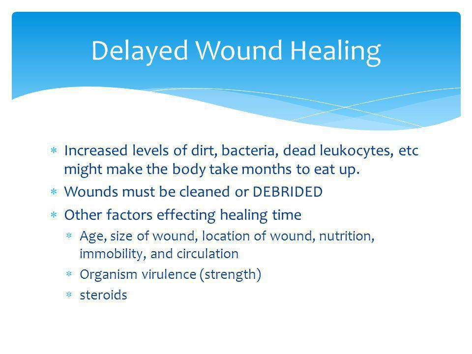 Delayed Wound Healing Increased levels of dirt, bacteria, dead leukocytes, etc might make the body take months to eat up.