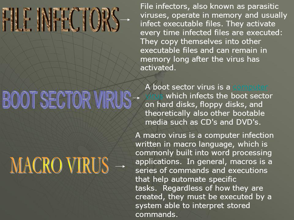 FILE INFECTORS BOOT SECTOR VIRUS MACRO VIRUS