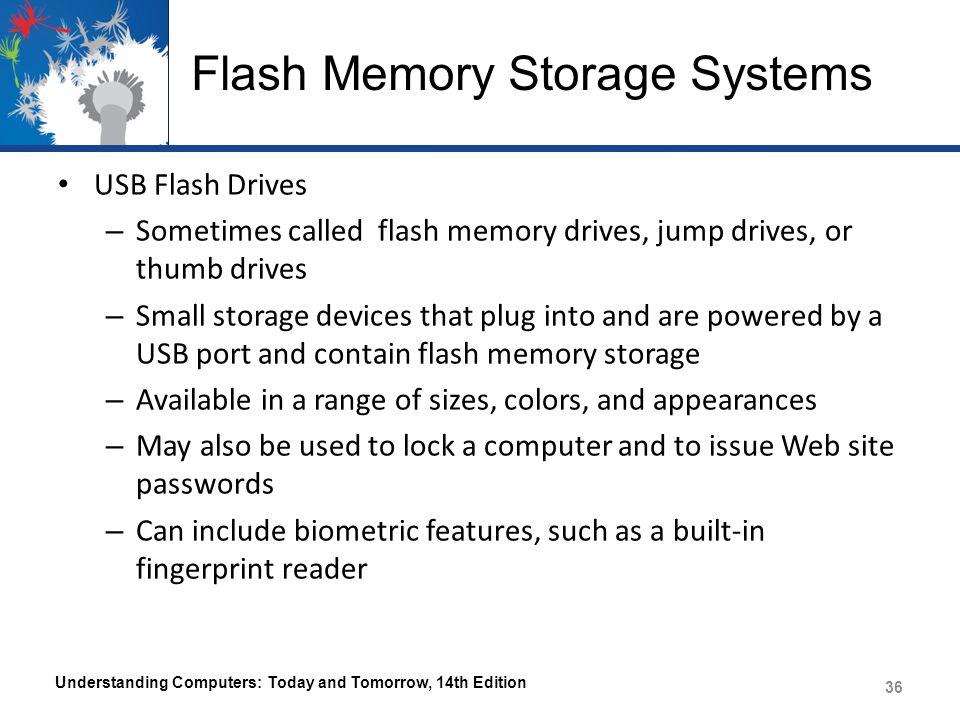 Flash Memory Storage Systems