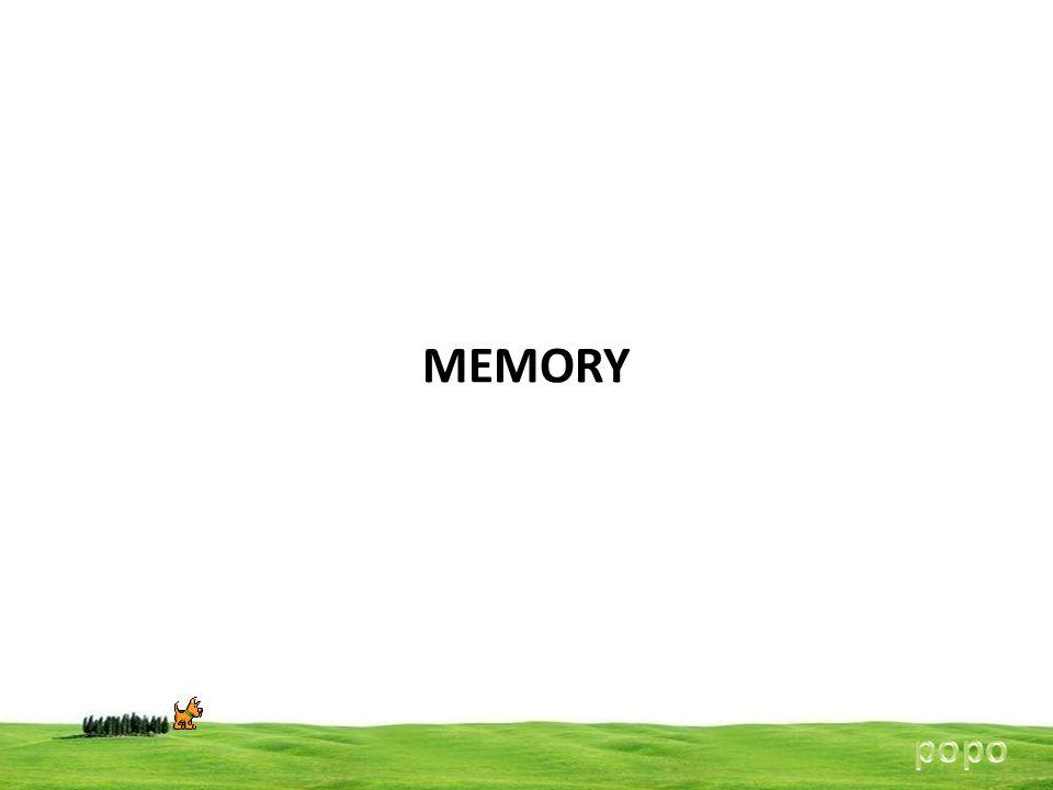 MEMORY popo
