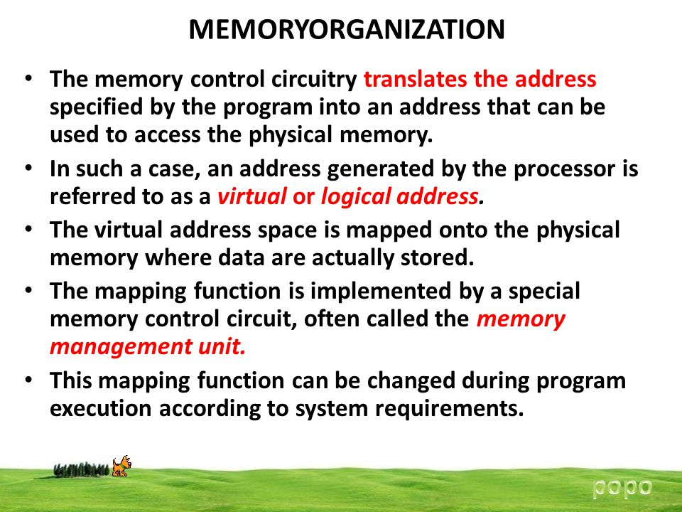 MEMORYORGANIZATION popo