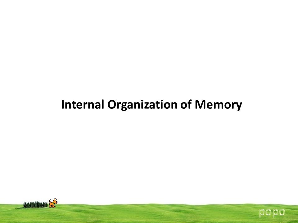 Internal Organization of Memory
