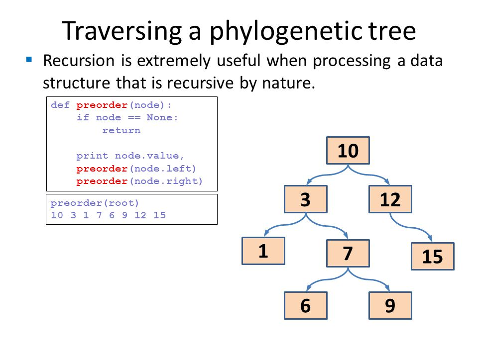 Traversing a phylogenetic tree