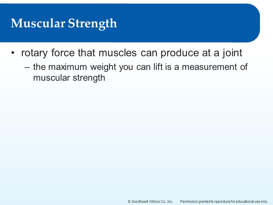 Muscular Strength rotary force that muscles can produce at a joint