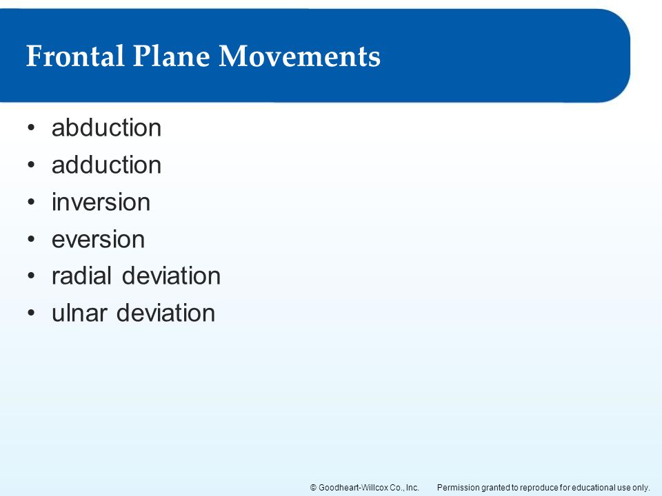 Frontal Plane Movements