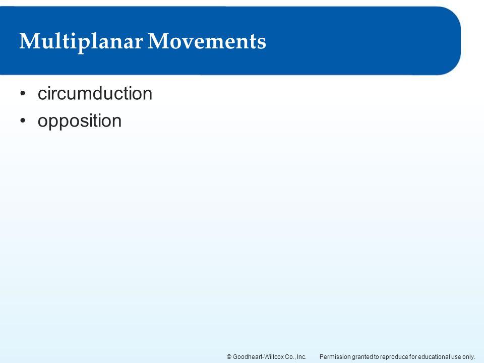Multiplanar Movements
