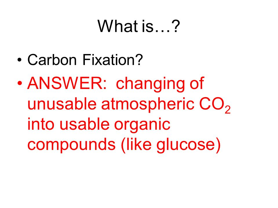 What is…. Carbon Fixation.