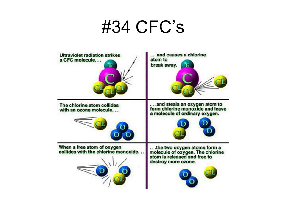 #34 CFC's