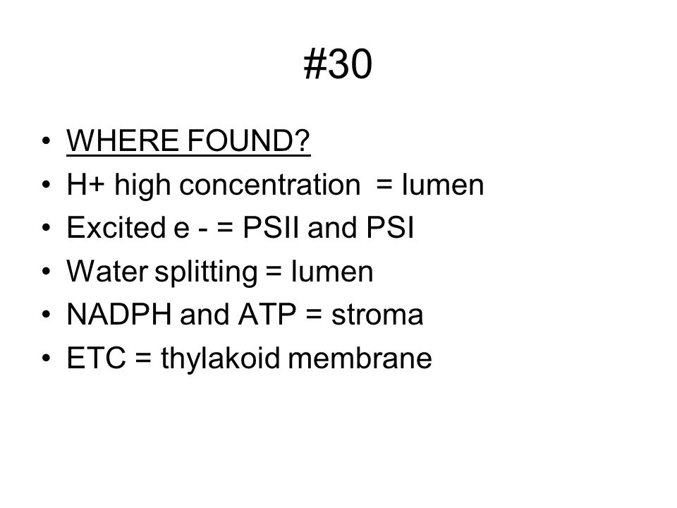 #30 WHERE FOUND H+ high concentration = lumen