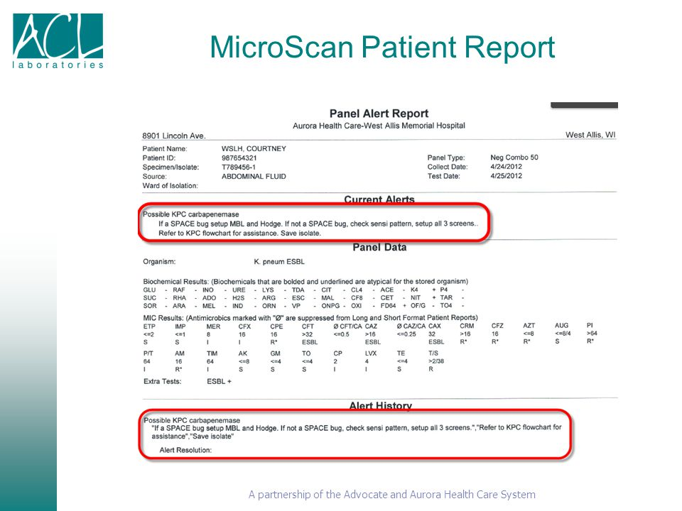 MicroScan Patient Report