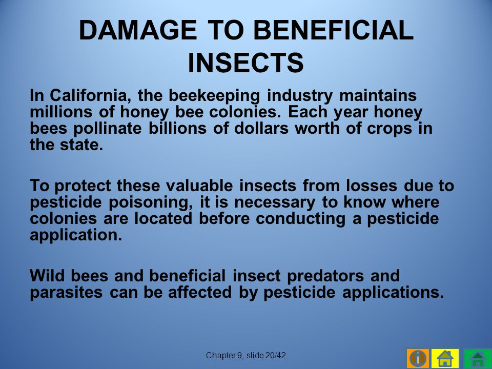 DAMAGE TO BENEFICIAL INSECTS