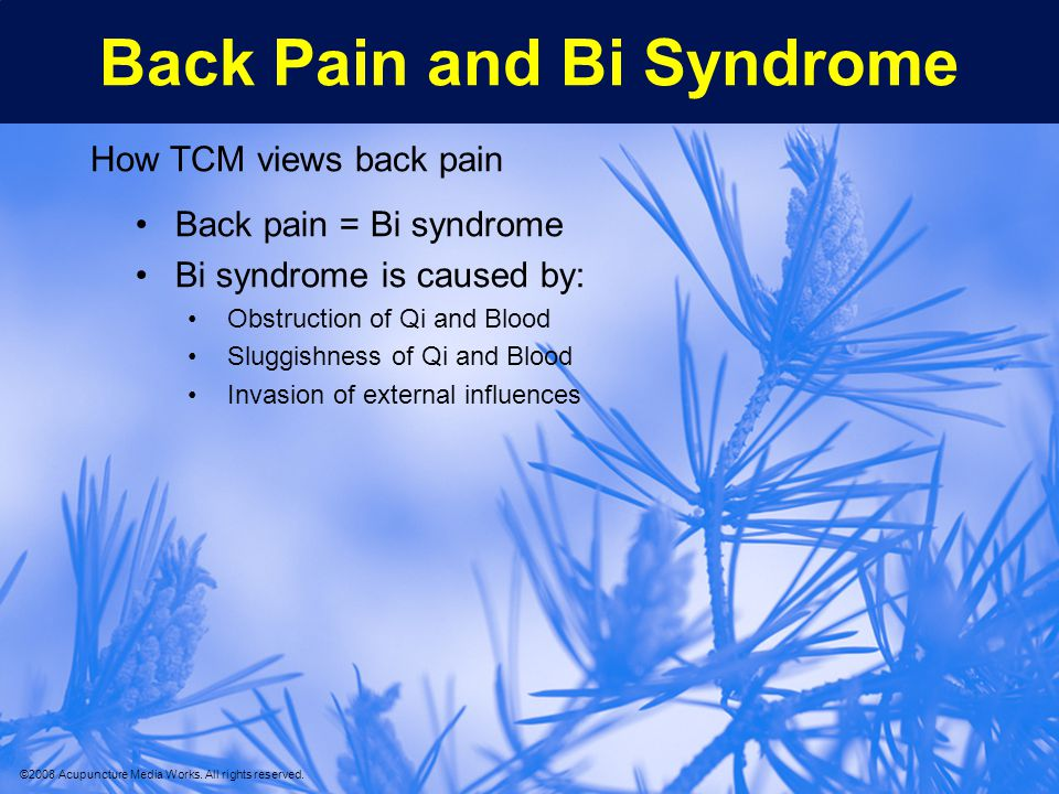 Back Pain and Bi Syndrome