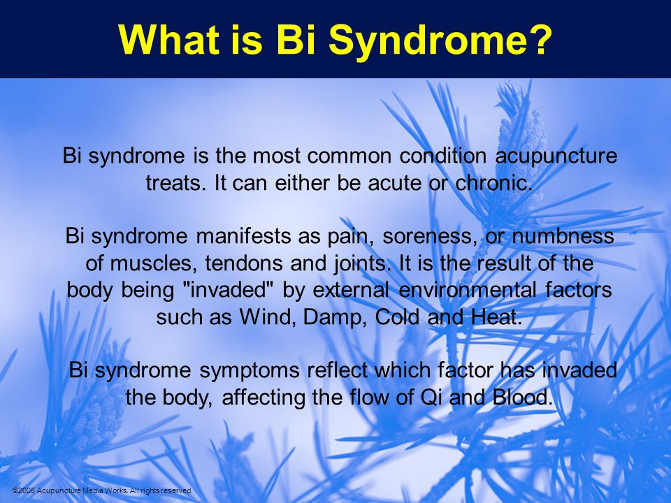 What is Bi Syndrome Bi syndrome is the most common condition acupuncture treats. It can either be acute or chronic.