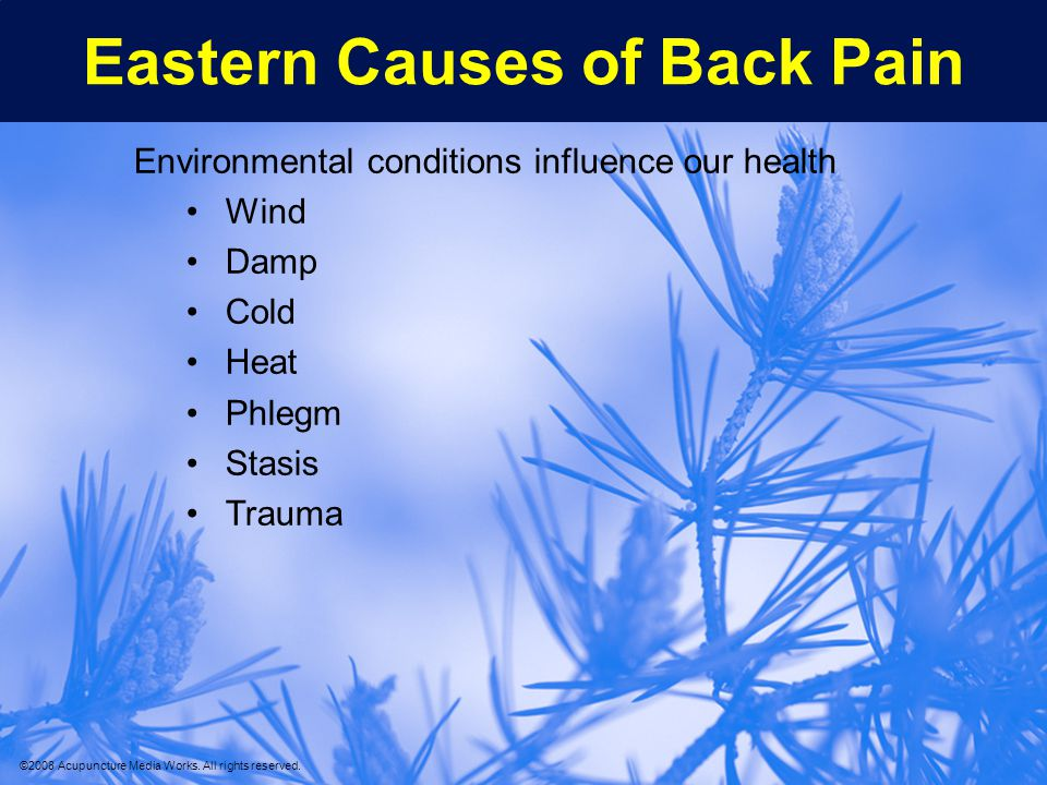 Eastern Causes of Back Pain