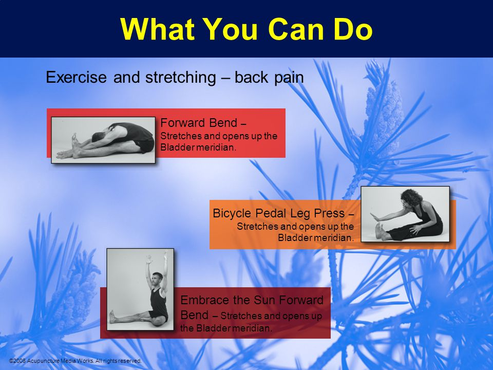 What You Can Do Exercise and stretching – back pain