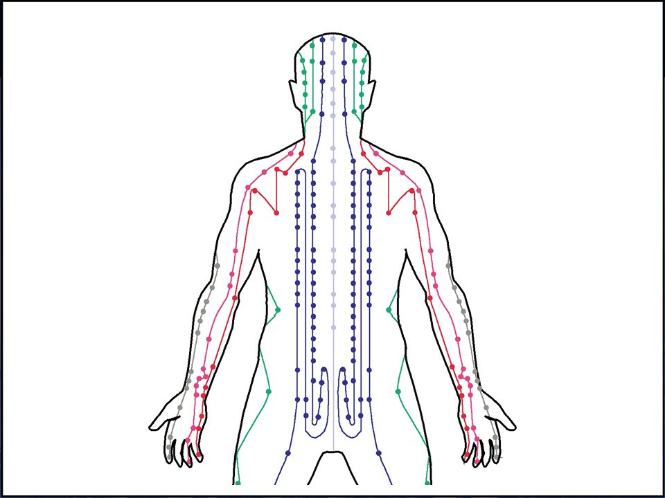 Acupuncture and Meridians