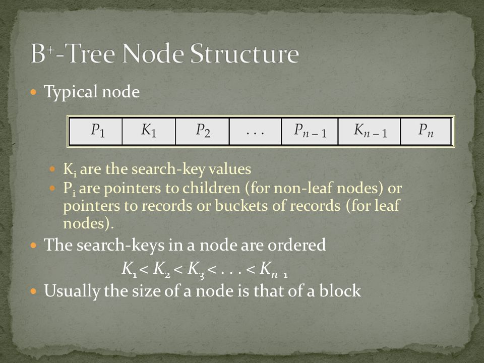 B+-Tree Node Structure