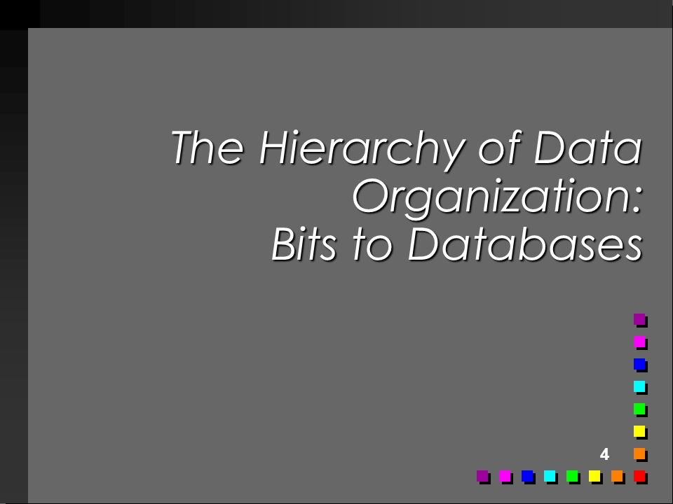 The Hierarchy of Data Organization: Bits to Databases