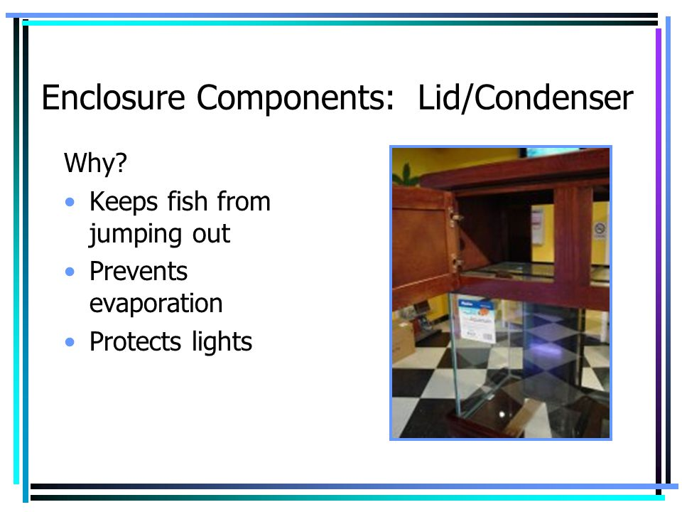 Enclosure Components: Lid/Condenser
