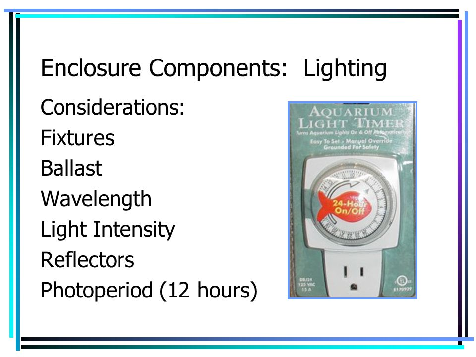 Enclosure Components: Lighting