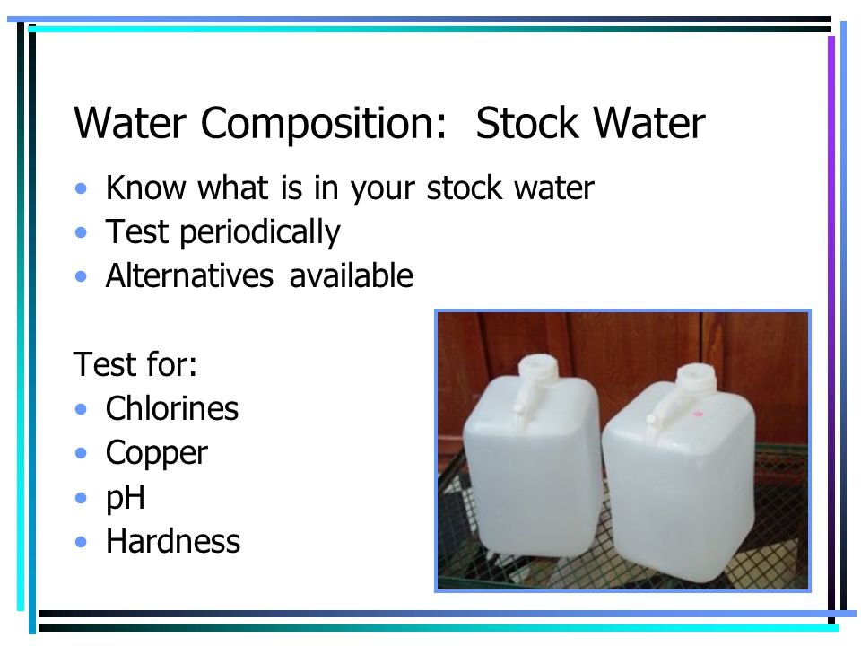 Water Composition: Stock Water
