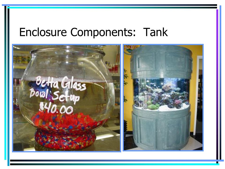 Enclosure Components: Tank