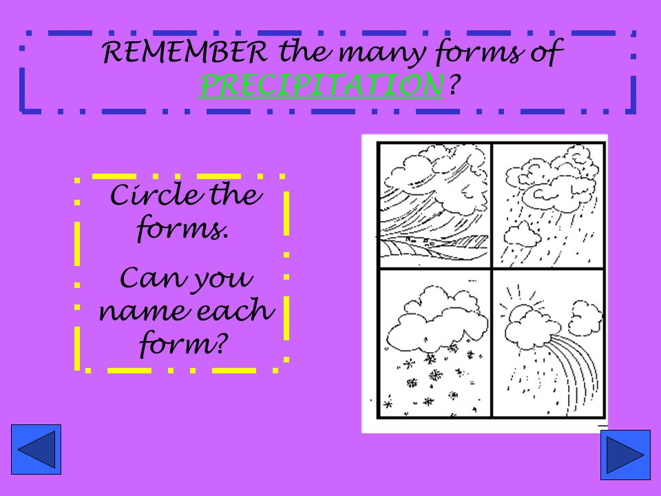 REMEMBER the many forms of PRECIPITATION