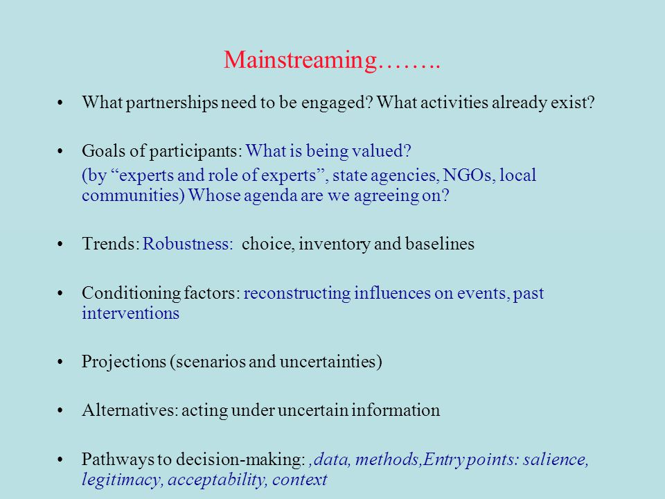 Mainstreaming…….. What partnerships need to be engaged What activities already exist Goals of participants: What is being valued