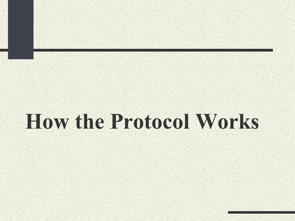 How the Protocol Works