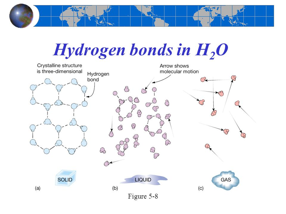 Hydrogen bonds in H2O Figure 5-8