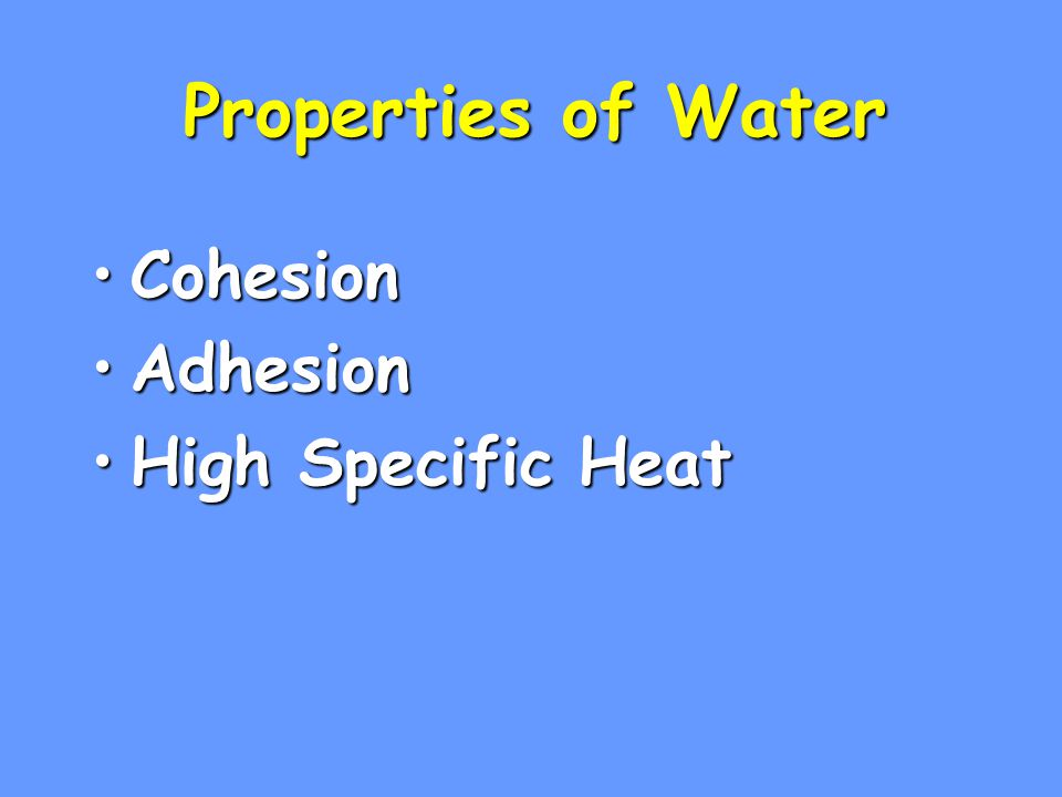 Properties of Water Cohesion Adhesion High Specific Heat 1