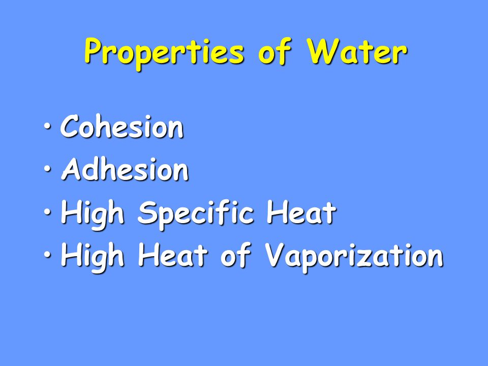 Properties of Water Cohesion Adhesion High Specific Heat