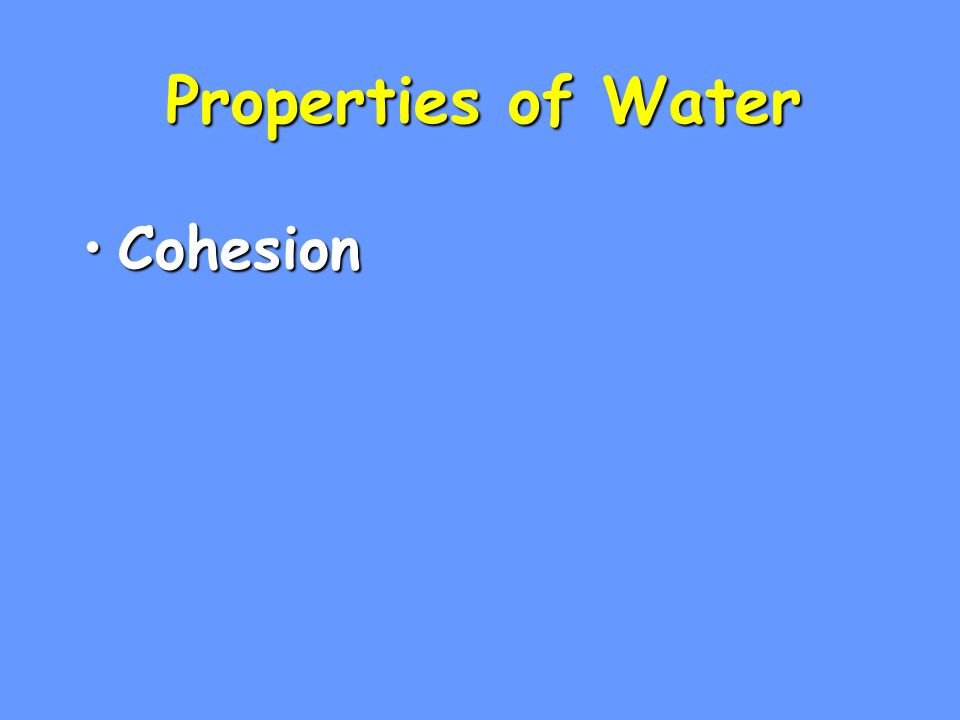 Properties of Water Cohesion 1
