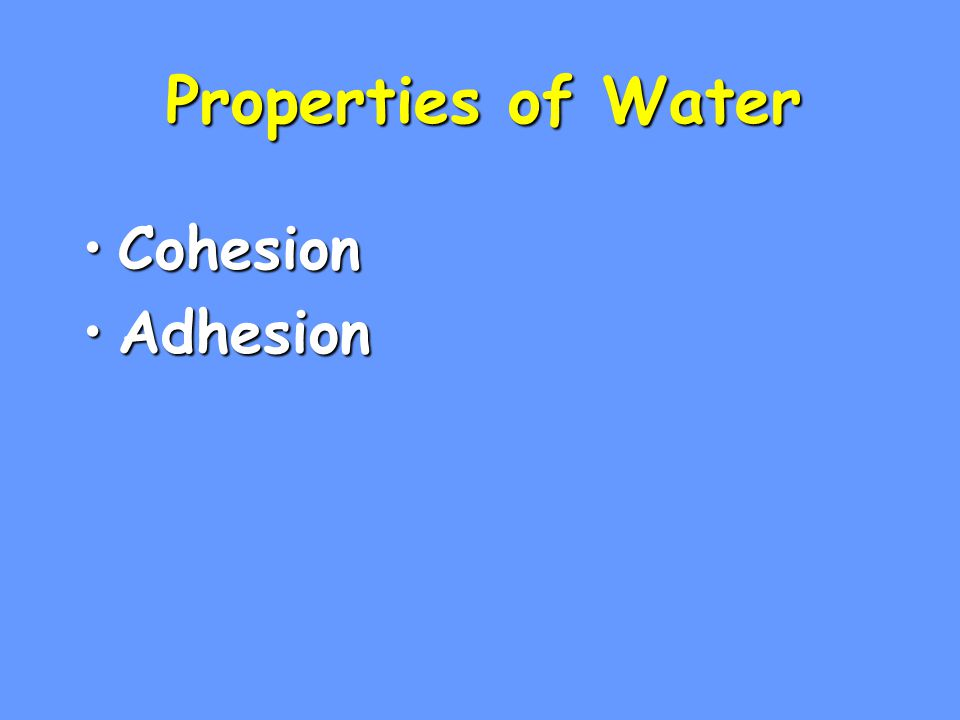 Properties of Water Cohesion Adhesion 1