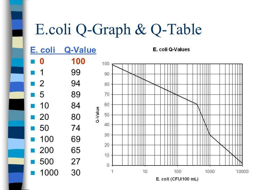 E.coli Q-Graph & Q-Table