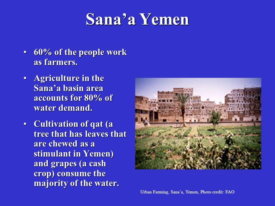 Sana'a Yemen 60% of the people work as farmers.